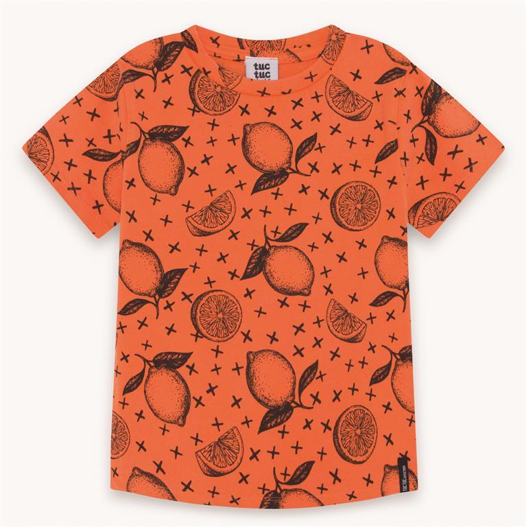 Orange Fruit Cotton T-Shirt